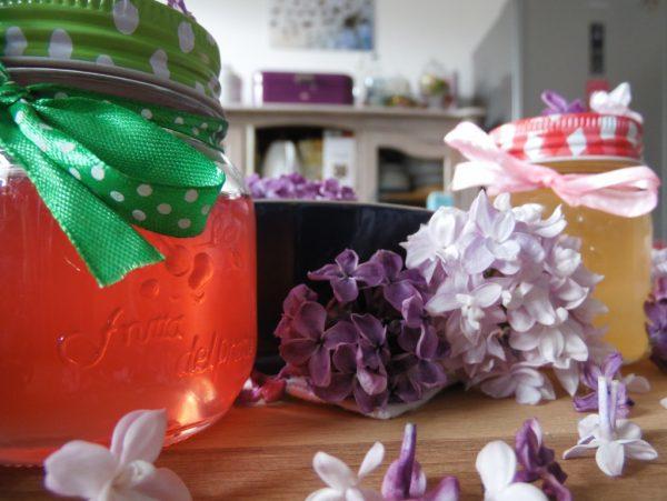 Rezept: FLIEDERBLÜTEN-GELEE selbstgemacht! Ein Frühlingstraum auf dem Frühstücksbrötchen #Flieder #Food #saisonaleRezepte