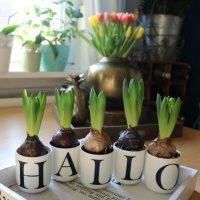 Do it yourself Donnerstags-Deko : Wie man aus ein paar Buchstaben Tassen und Hyazinthen eine schnelle Frühlingsdeko zaubert!