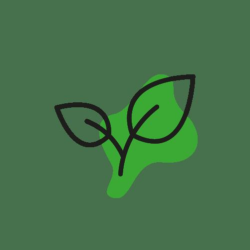 produzione quadricuore abbigliamento ecosostenibile