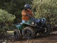 Grizzly450_14