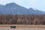 Big Country Erlebnisreisen Baikalsee Herbst ATV Einsam