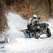 snow-6515