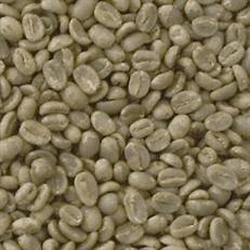 Green Coffee La Cascada, Nicaragua (Maragogype)