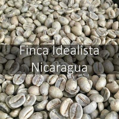 Green Nicuaraguan Finca Idealista