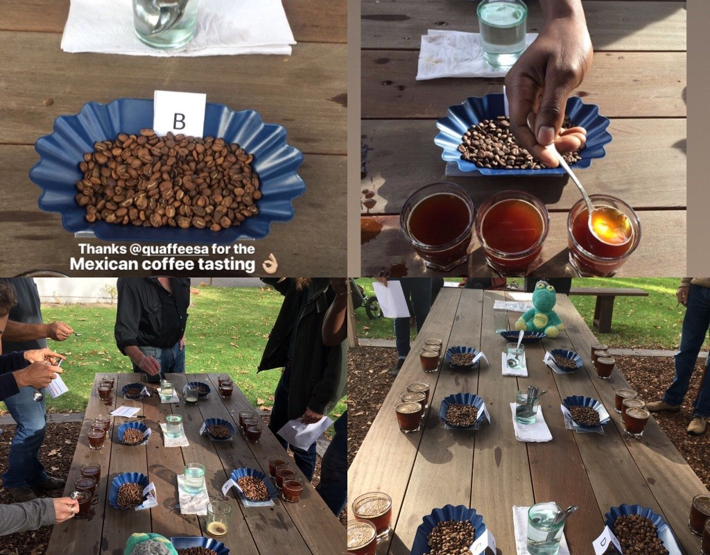 Public cupping of Mexican Coffee