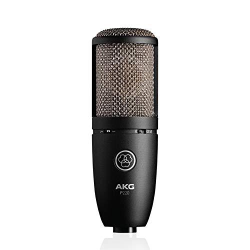 AKG P220Micro à condensateur