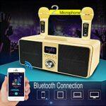 Home Karaoké Bluetooth Haut-Parleur, 300W Super Power, Tweeter À Pleine Gamme, Subwoofer, Chargement Rapide, Adapté Au Chant De Famille, en Plein Air Et en Fête (avec 1 Microphones sans Fil)