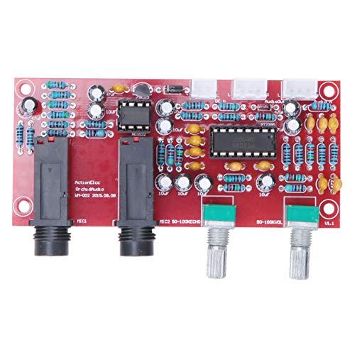 Carte d'amplificateur de réverbération Carte d'amplificateur audio Réverbération Karaoké Carte d'amplificateur OK Carte d'amplificateur de microphone numérique PT2399 pour Home Cinéma