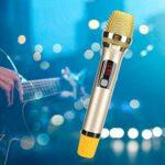 Surebuy Microphone sans Fil MIC sans Fil, pour karaoké