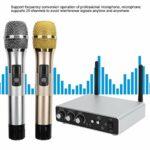 Xndz Système de karaoké à Domicile Bluetooth, Divertissement de karaoké avec Microphone sans Fil Multifonction, kit de Microphone Vocal Intelligent