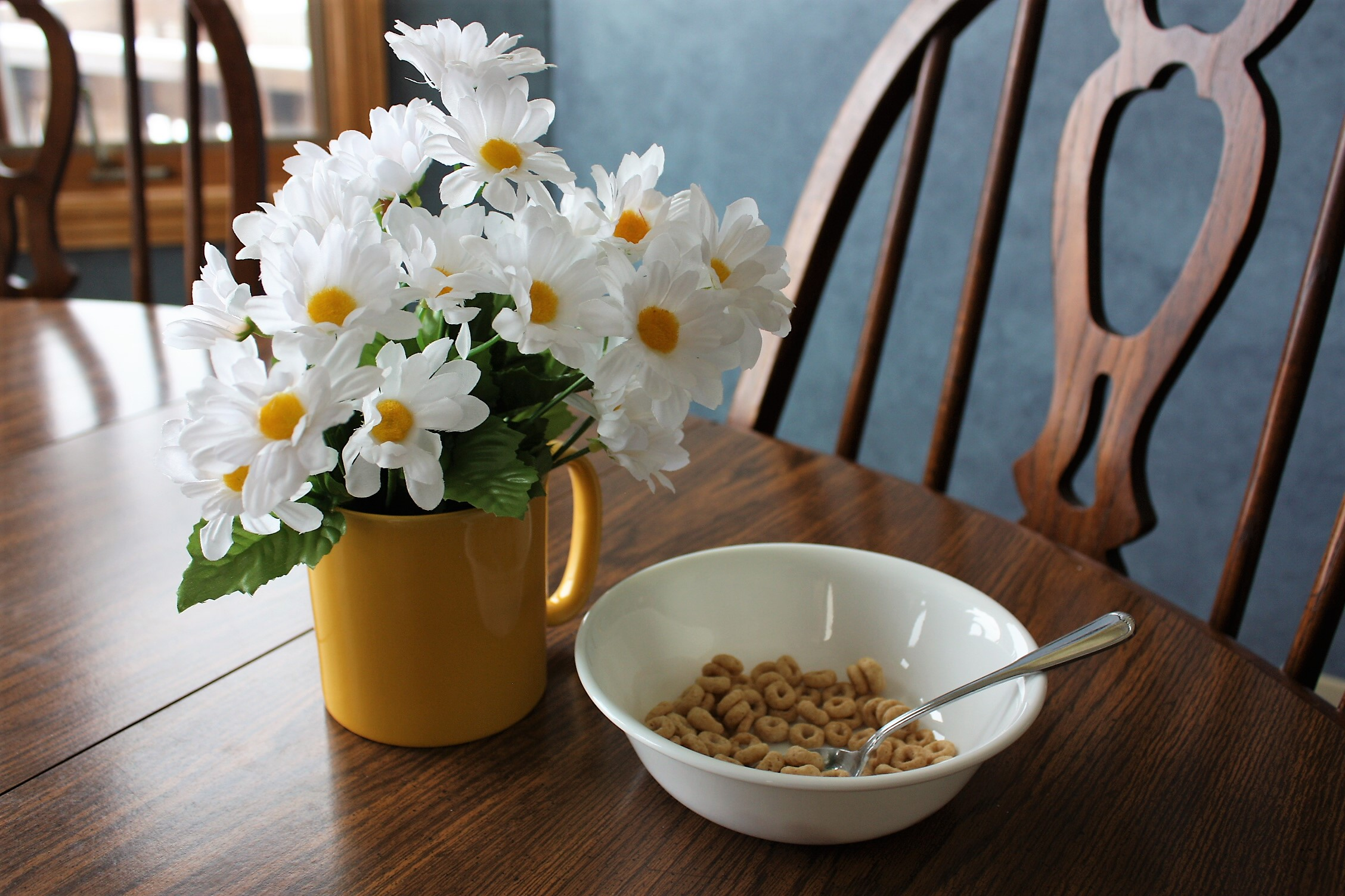Daisies and Cereal 005c