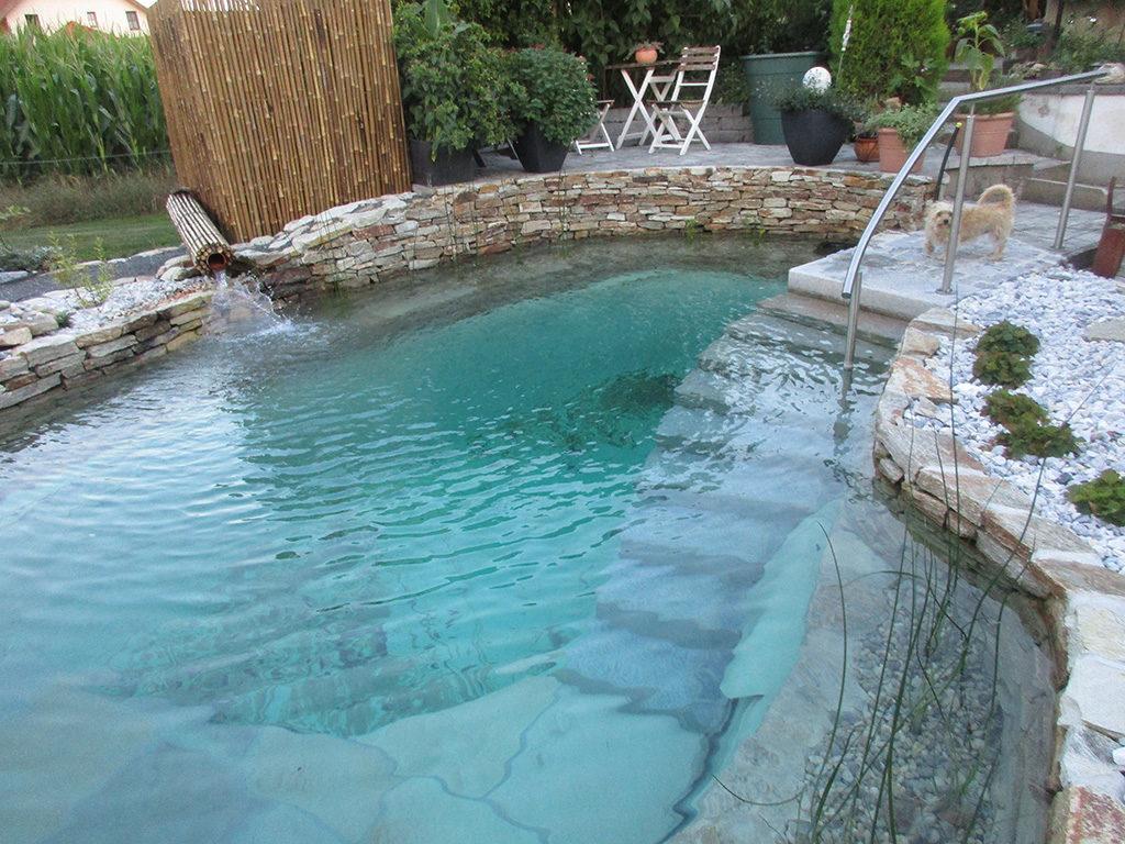 Schwimmteich  puristischer Naturgenuss in Ihrem eigenen Garten