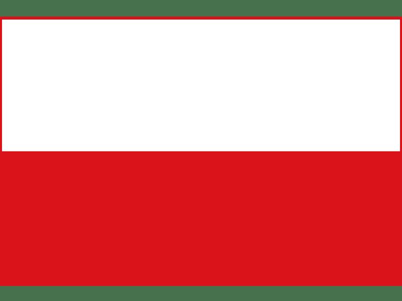 Traduzioni polacco  Qualitalia  Traduzioni e Congressi
