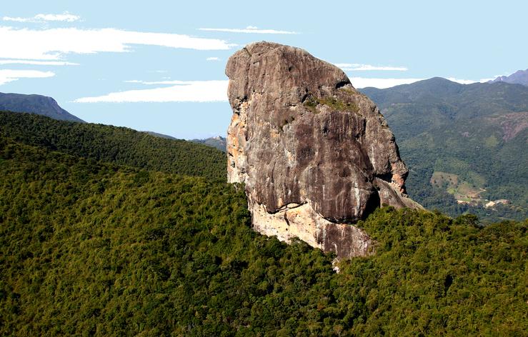 Descubra as belezas do Parque Nacional de Itatiaia (RJ) | Qual Viagem
