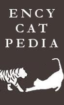 Encycatpedia Vol.X : que faire quand sa chatte est en chaleur ?