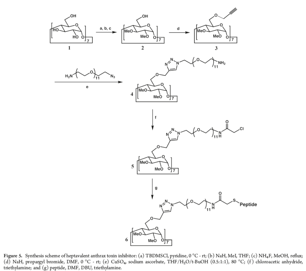 medium resolution of structure based design of a heptavalent anthrax toxin inhibitor