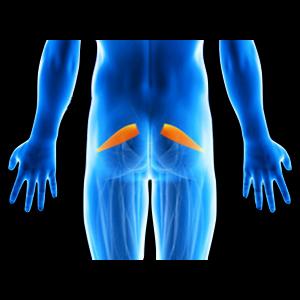 Contrattura piriforme: il muscolo si è rilassato durante il trattamento