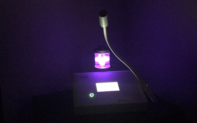 NanoVi purple featured