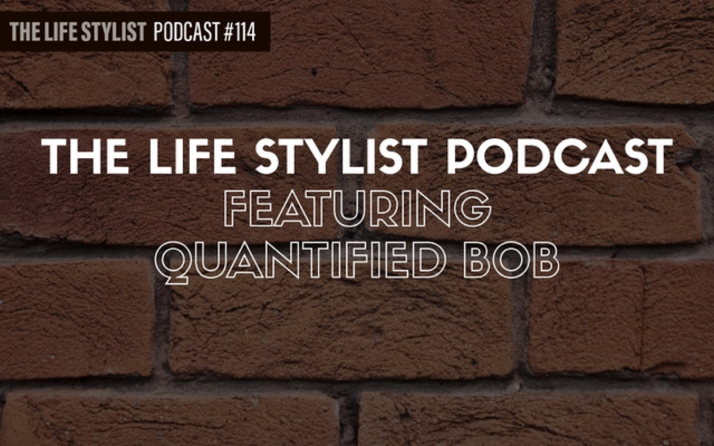 The Life Stylist Podcast with Quantified Bob