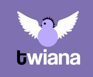 ¿Qué es Twiana?