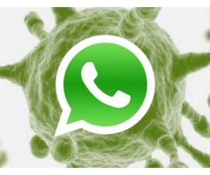 Zoopark, el gran problema de Whatsapp y dispositivos Android.