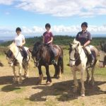 Quantock Trekking Horse Riding In Somerset S Beautiful Quantock Hills