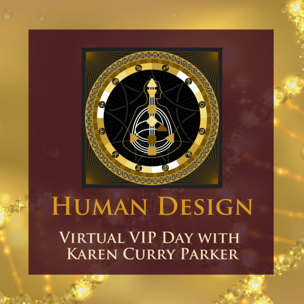 Virtual – VIP Day with Karen Curry Parker