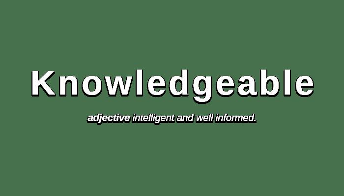 Knowledgeable   /ˈnɒlɪdʒəb(ə)l/ adjective intelligent and well informed.