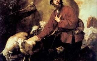 Jacobs_Sheep