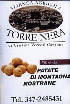 01torrenera_logo