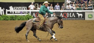 While Quarter Horses dominated the competition, three other breeds competed as well, including this Brazilian Criollo bred bay roan stallion ridden by Joao Antonio Salgado Filho. The pair earned a 212.5 for their run.