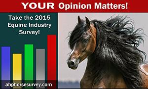 AHP-survey-ad