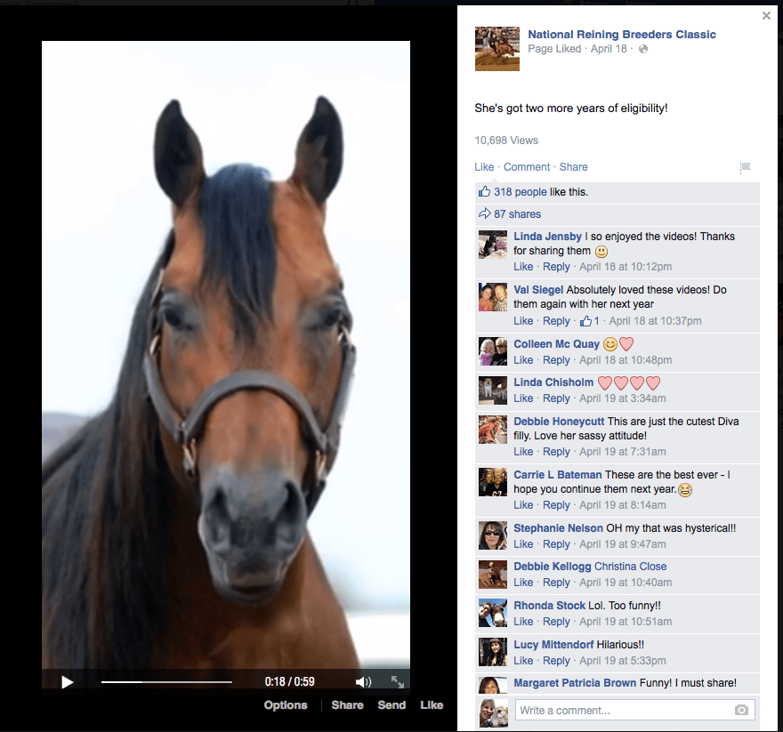NRBChorse