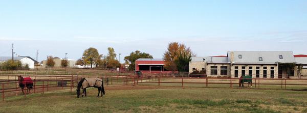 horseblankets