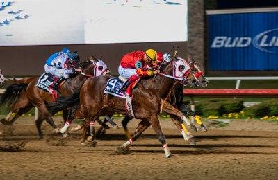 SDP LC01 race 13SP