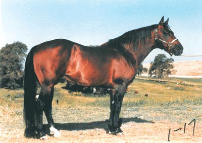 InthePast DryDoc 1991