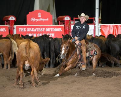 In The Blood Qb Cat Quarter Horse News