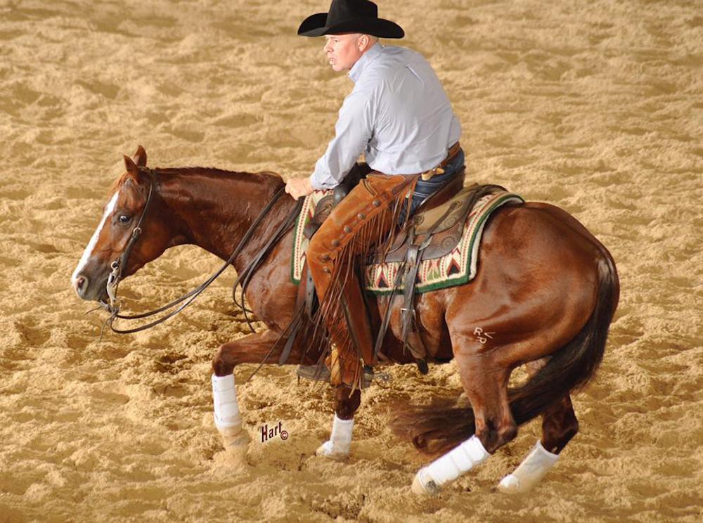 Special Nu Boon - Quarter Horse News