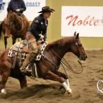 horse crouching