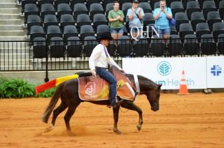 Man riding a horse