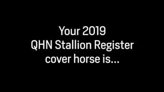 2019 QHN Stallion Register Cover Horse