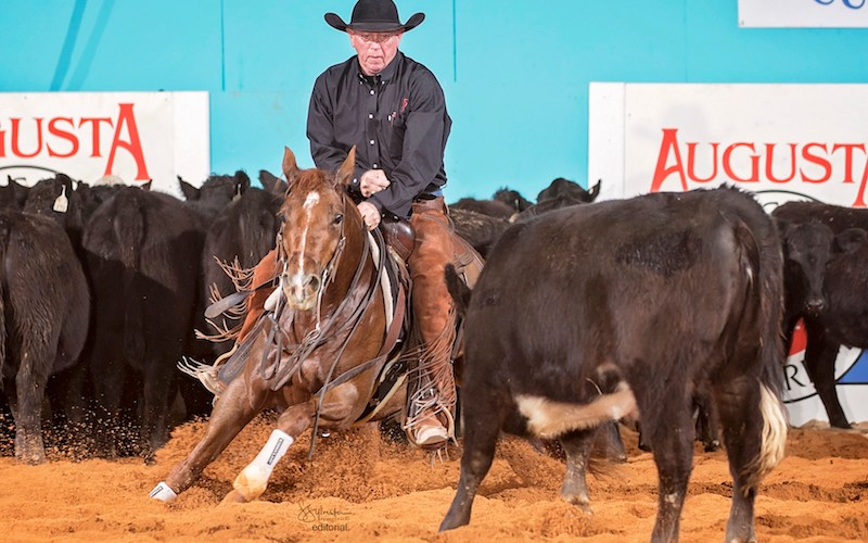 horse chasing a cow during cutting