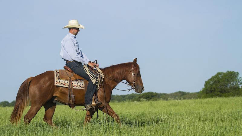 Ben Baldus riding horseback through green grass