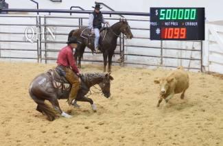 cutting horse