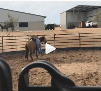 Craig Schmersal reining horses