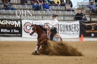 horse-riderz