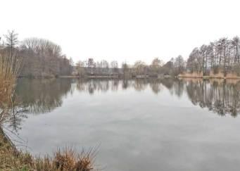 Großer Gemeindeteich (Anglerteich)