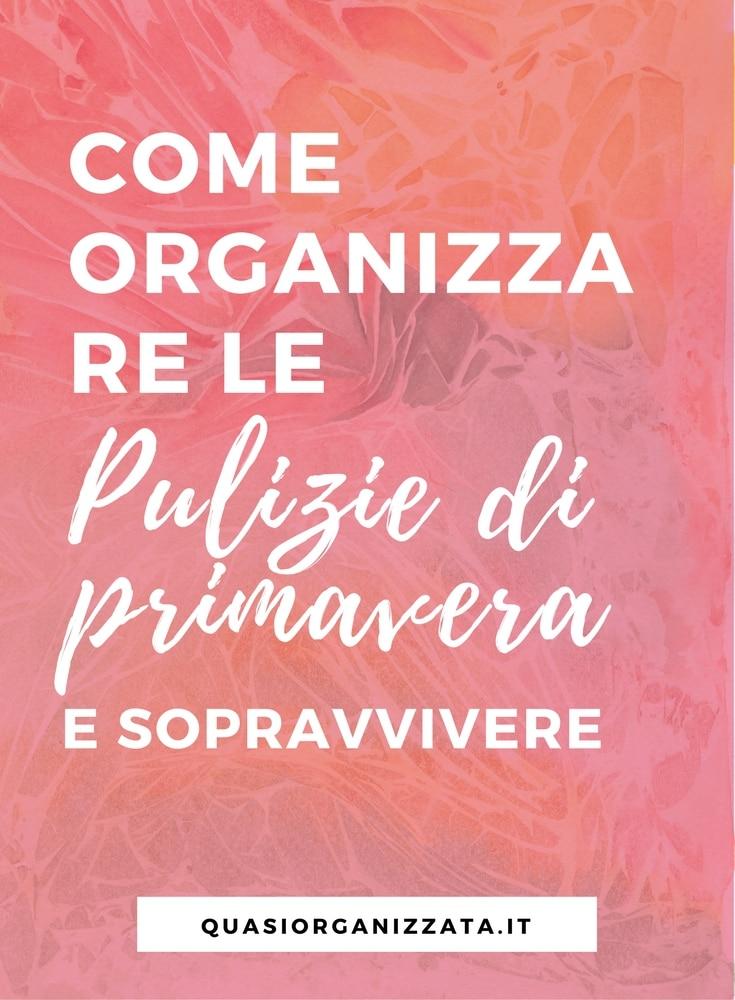 Pulizie di Primavera Come Organizzarsi  Quasiorganizzatait