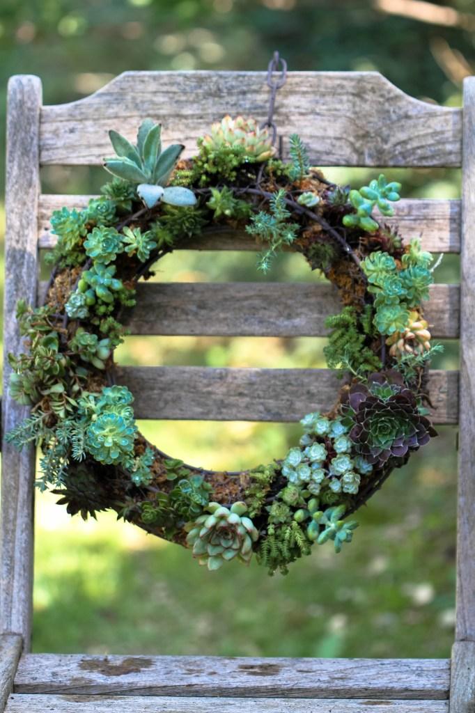 couronne succulentes (5)