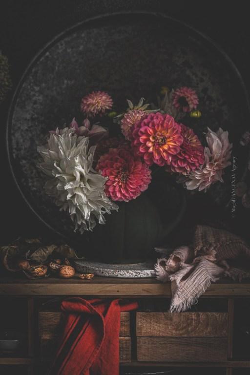 Dahlias d'automne